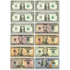 US Dollar Bill Set